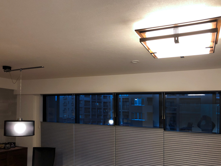 light moove robie celling livingdining